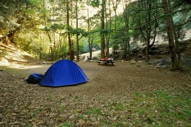 Cedar Creek Campground (10mi east of Glennville, Rest Day)