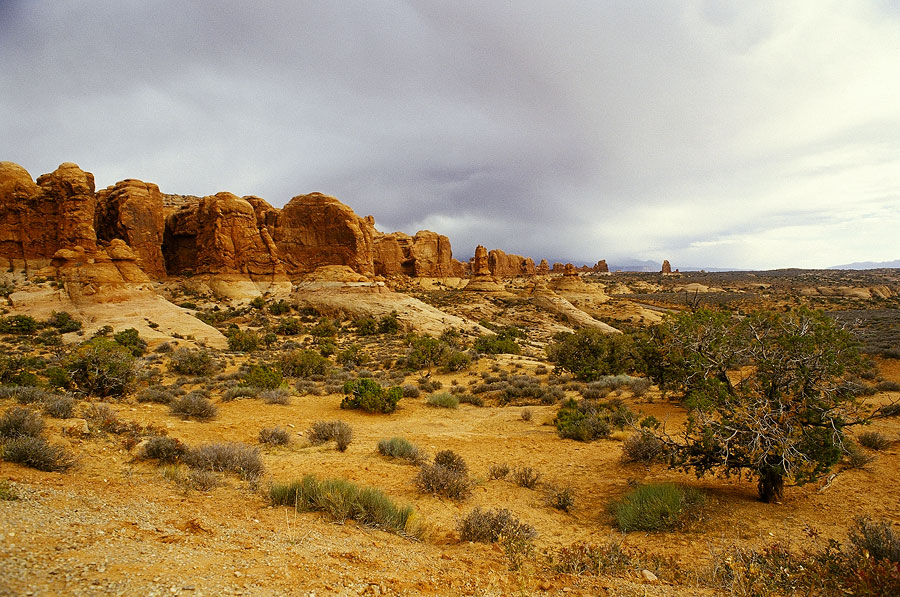 Arches National Park (Day 154)