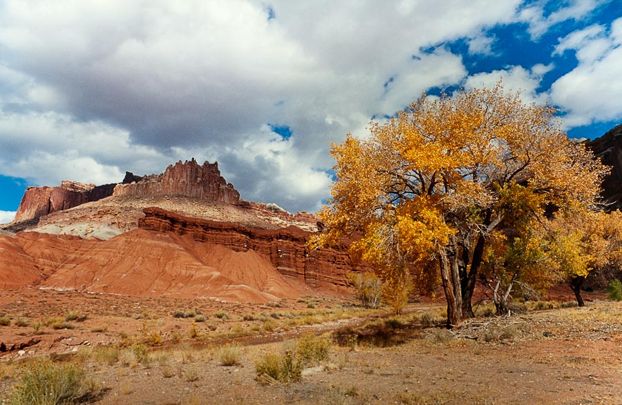 Castle Rock, Capitol Reef National Park (Day 162)
