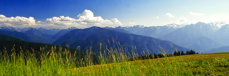 Ride down Hurricane Ridge, Olympic National Park, WASHINGTON (Day 72)