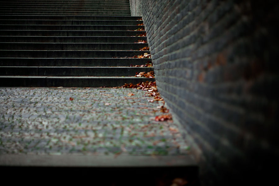 Leaves on stairs