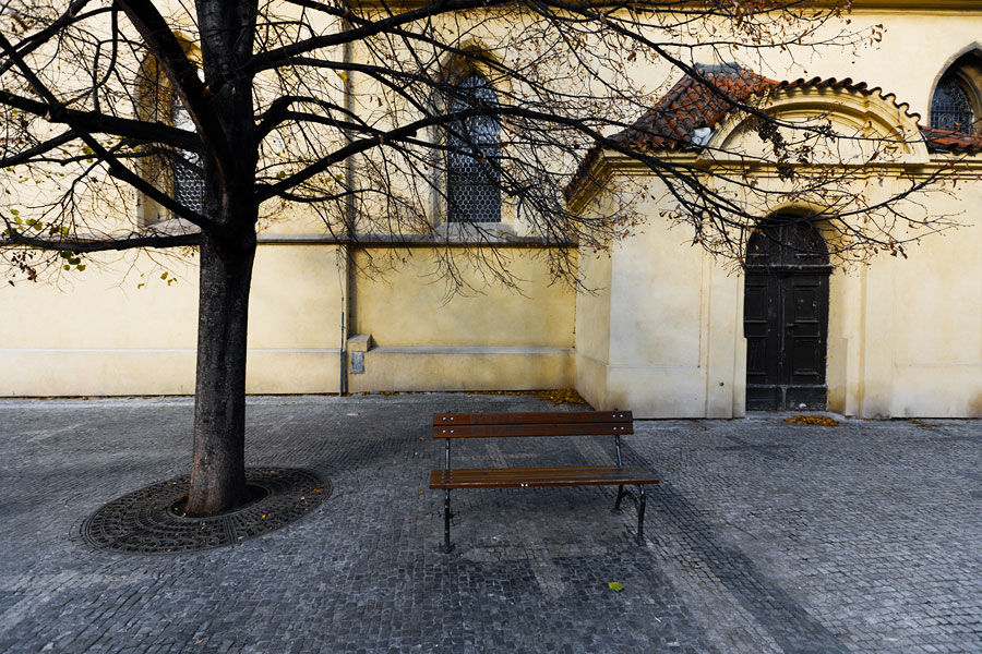 Church tree and bench, Prague