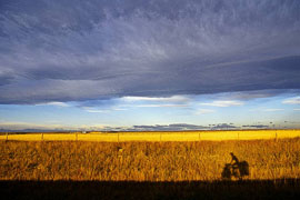 A North American Bicycle Journey