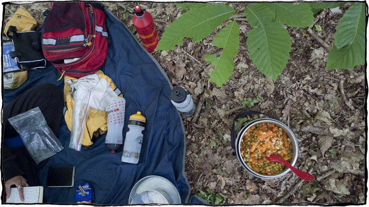 Bicycle Touring East Sussex - Dinner in the Woods