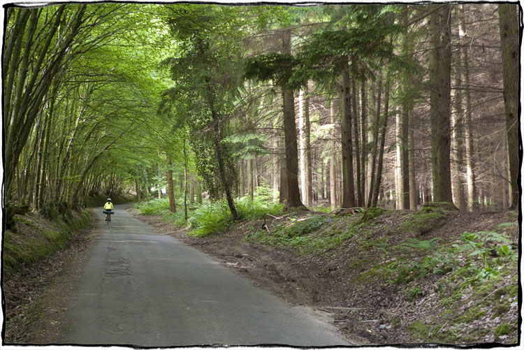 Bicycle Touring East Sussex – Cycling