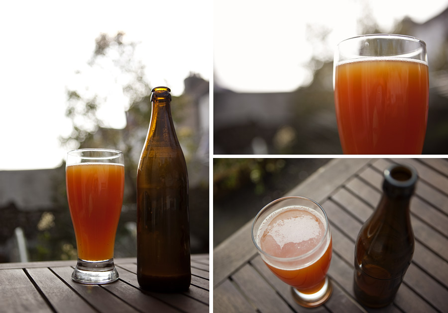 The finished gluten-free home-brew beer