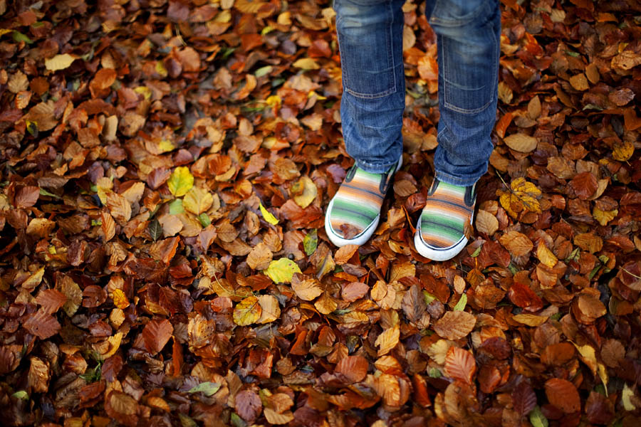 Shoes and Leaves, Brighton in the Autumn