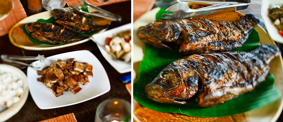 Mayumi Resort Anilao Tilapia and Port Belly