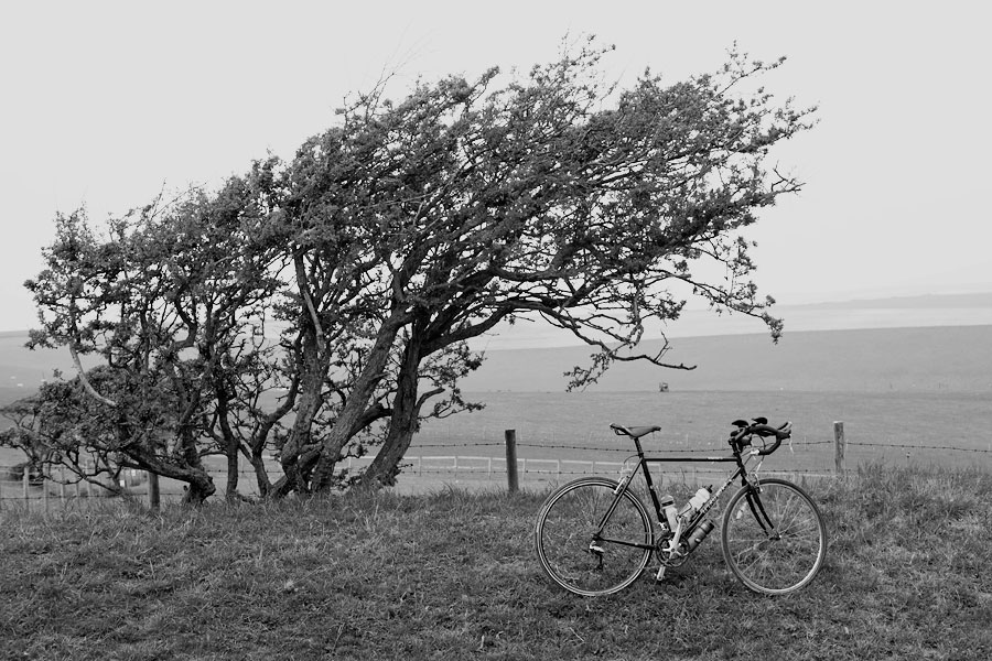 South of Telscombe, Cycling in Sussex - Bike Porn