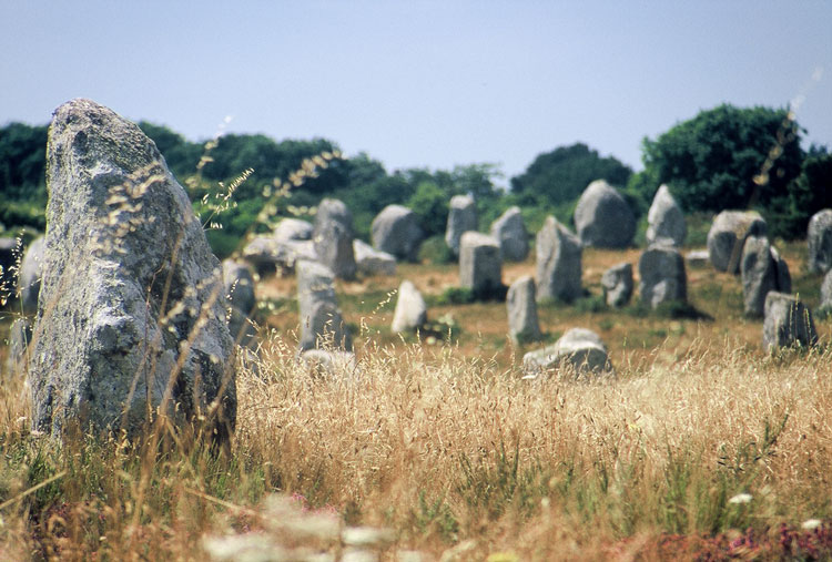 Menhirs, Carnac [Day 7]