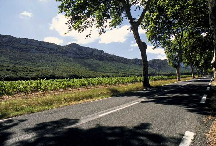 Skirting the foothills of the Pyrenees, just West of St Paul de Fenouillet [Day 1]